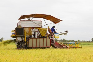 Farming jobs